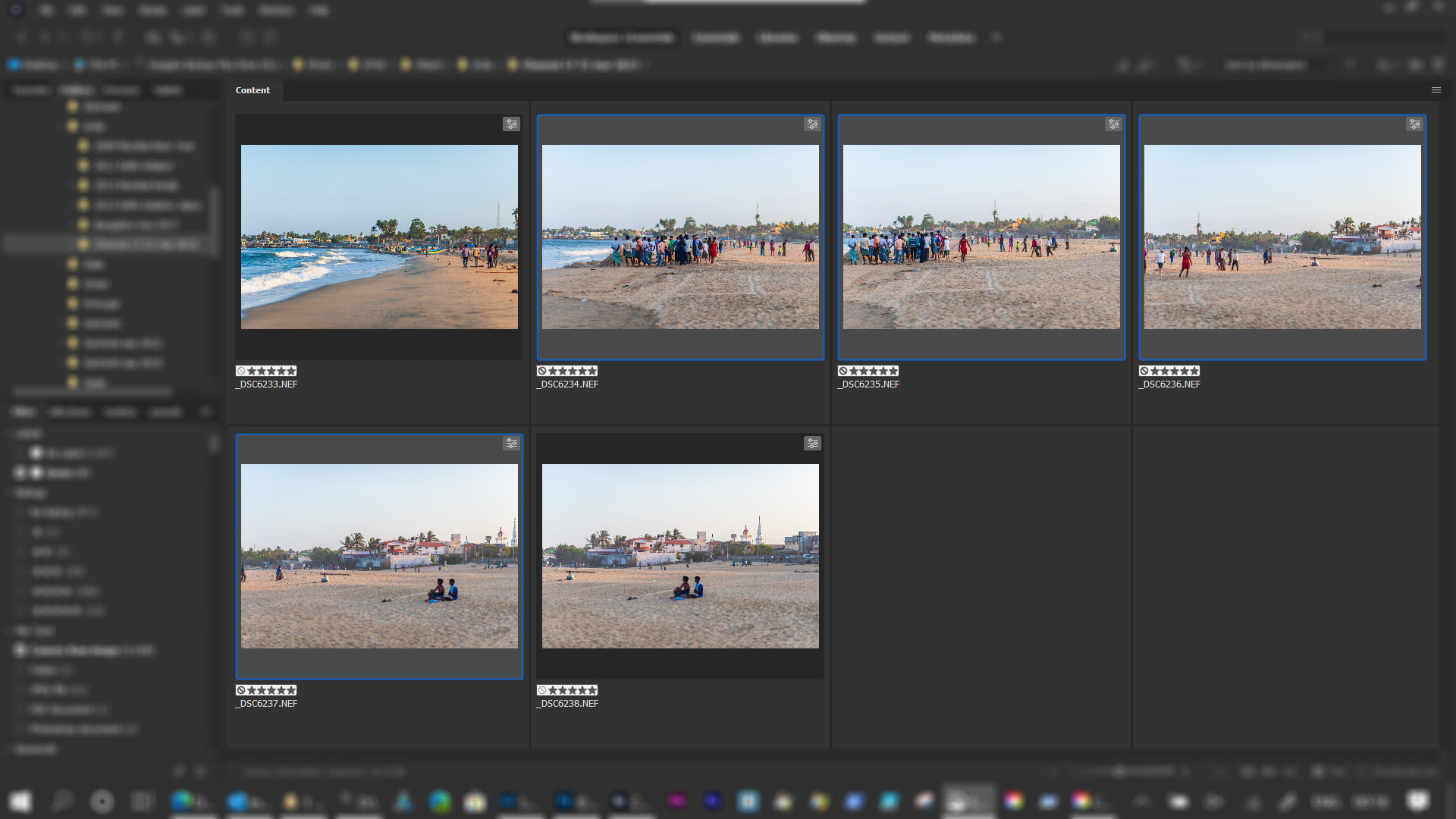 Four images selected in Adobe Bridge.