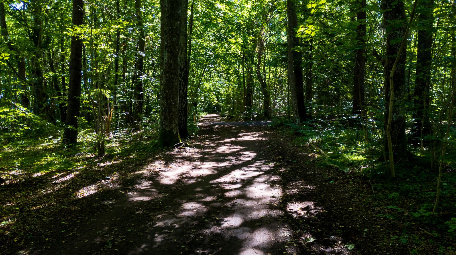 Coastal trail from Horten to Åsgårdstrand.